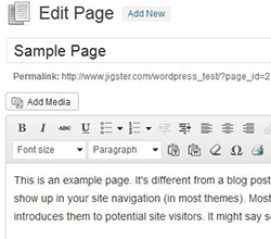 WordPress Edit Article Sample page